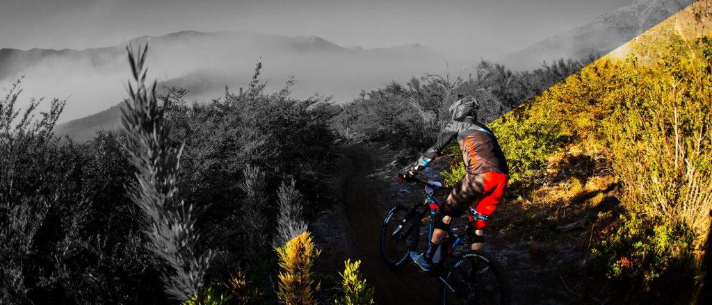Gamme vélos Giant/Liv